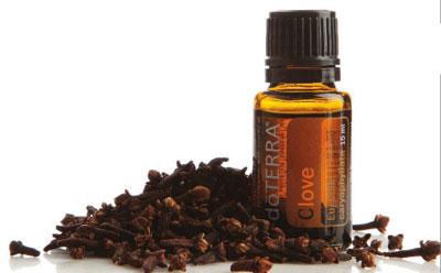 Esenciálny olej Clove klinček doterra
