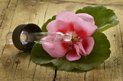 Esenciálny olej Geranium muškát doterra